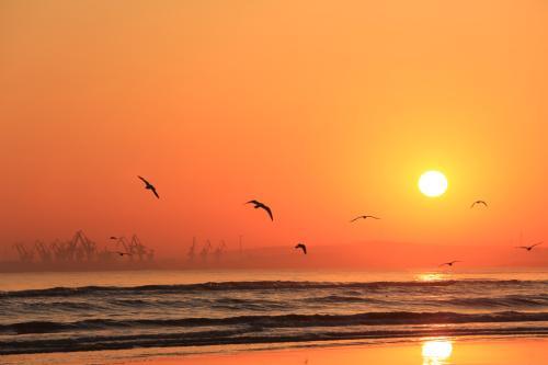 《太阳神途》独家1.76奇缘惊变,神途终于出太阳了
